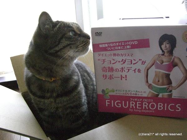モムチャンダイエット【フィギュアロビクス】到着!2010年7月